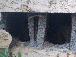 cinder block bees